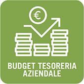 Budget Tesoreria Aziendale
