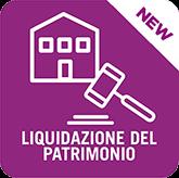 Singola Pratica Liquidazione del Patrimonio Legge n. 3/2012