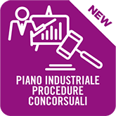 Singola Pratica Piano Industriale Procedure Concorsuali