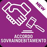 Software Accordo Sovraindebitamento Legge n. 3/2012